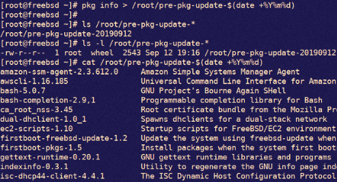 [How-To] FreeBSD Applying Security Updates Using pkg/freebsd-update