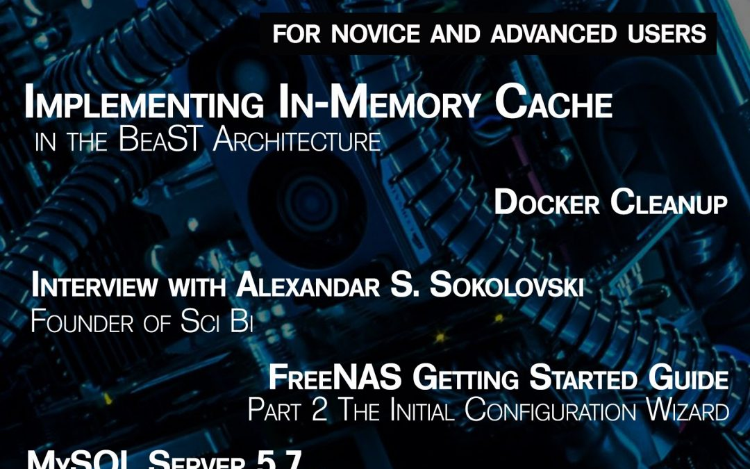 BSD Magazine: Implementing In-Memory Cache in the BeaST Architecture