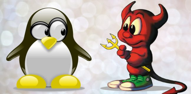 How do you use FreeBSD and why did you select it over a Linux distribution?